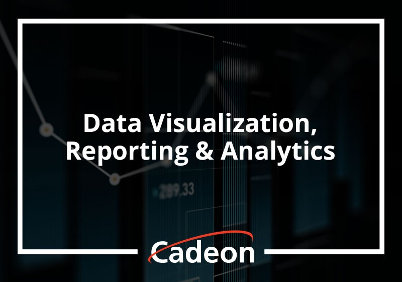 Data Visualization, Reporting & Analytics