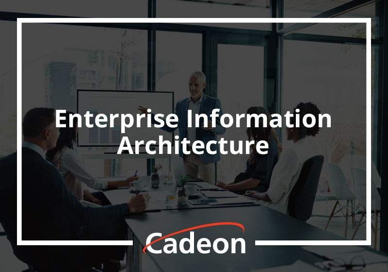 Enterprise Information Architecture